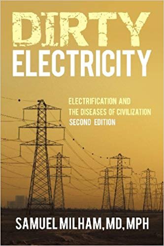 Dirty Electricity: Electrification and the Diseases of Civilization Image